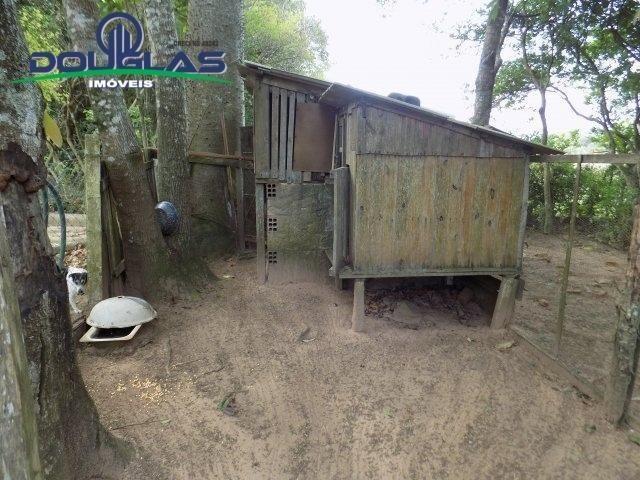 Douglas Imóveis- Tem Sítio 2500m², à Venda, Águas Claras - Foto 8