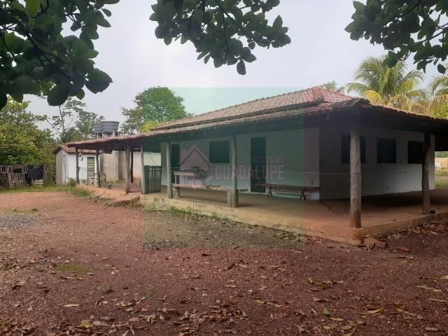 Sítio- Livramento 12hec - Foto 4