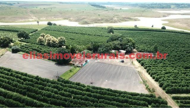 Fazenda de café - 110.000 pés - Patrocínio - MG - Foto 5