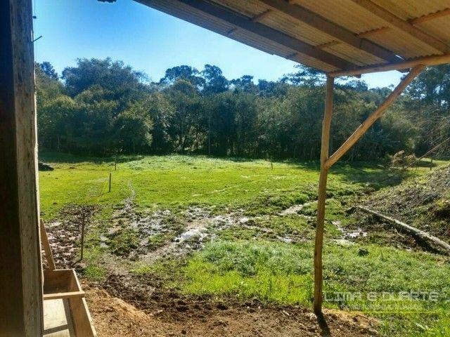 Chácara à venda em Rio Negrinho/SC - Foto 11