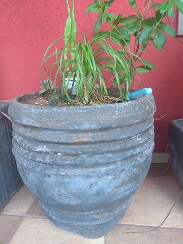 Vasos de cimeno com plantas - Foto 3