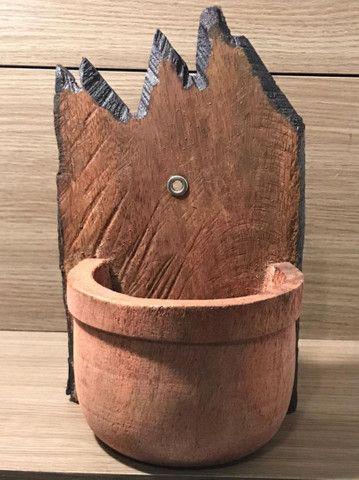 Vasos de coqueiro  - Foto 5