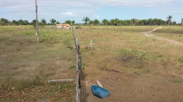28 alqueires , em vila nova dos martírios-ma D-03