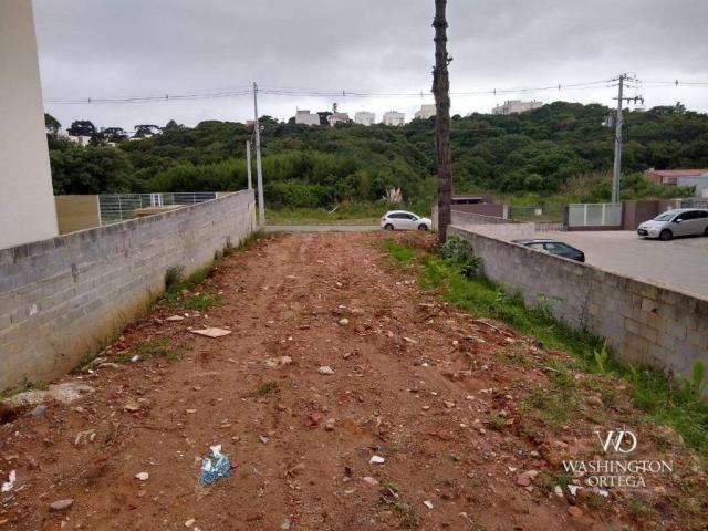 Terreno à venda, 4990 m² por r$ 1.700.000,00 - santo antônio - são josé dos pinhais/pr - Foto 7