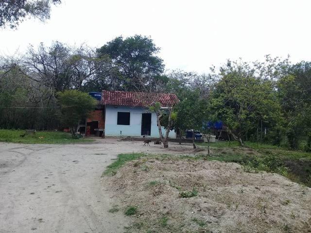 Sítio no bairro Chavão/Santo Antonio, Cabo Frio-RJ. 6.000m² - Foto 11