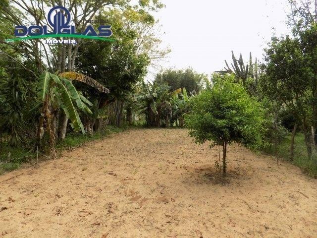 Douglas Imóveis- Tem Sítio 2500m², à Venda, Águas Claras - Foto 4