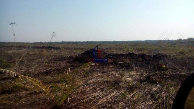 Fazenda à venda, por R$ 25.000.000 - Zona Rural - Humaita/AM - Foto 4