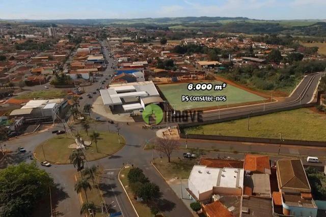 Terreno à venda, 6686 m² - vila oliveira - jardinópolis/sp