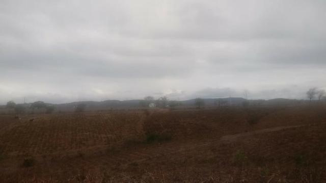 Ótima propriedade de 120 hectares, 70% plana, em Gravatá-PE. Por apenas R$ 780 mil! - Foto 14