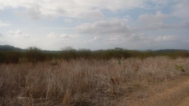 Ótima propriedade de 120 hectares, 70% plana, em Gravatá-PE. Por apenas R$ 780 mil! - Foto 9