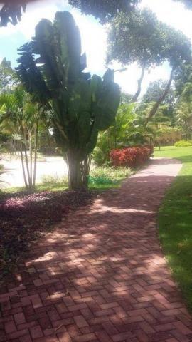 Terreno à venda, 616 m² por R$ 220.000 - Aldeia - Paudalho/PE - Foto 12