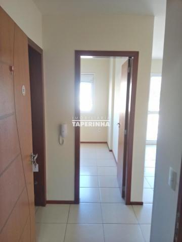 Apartamento central 1 dormitorio - Foto 3