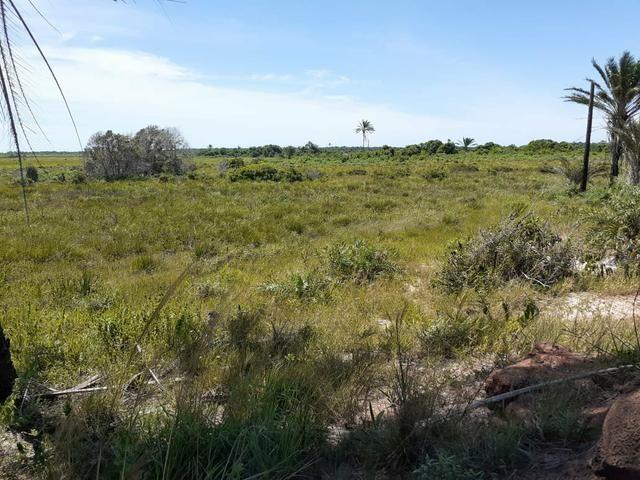 Fazenda próxima à Mucuri, Bahia - Foto 3