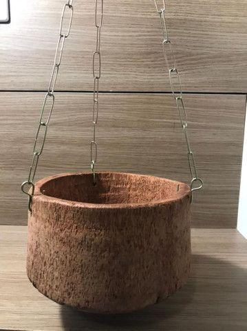 Vasos de coqueiro  - Foto 3