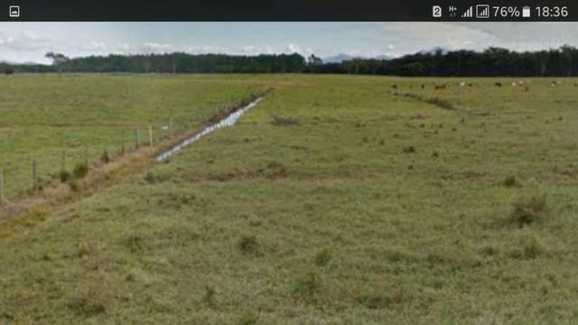 Fazenda Uma das Maiores da Região para Plantio ou Criação de Gado, Toda Plana - Foto 6