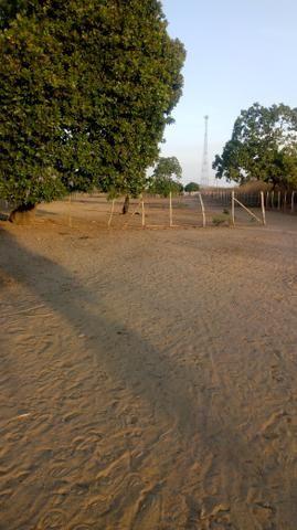 Vende-se terreno em Ocara - ce ou troco em outro terreno na região de Aquiraz - Foto 7