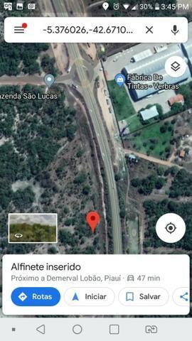 Vendo 03 hectares de terra - Foto 3