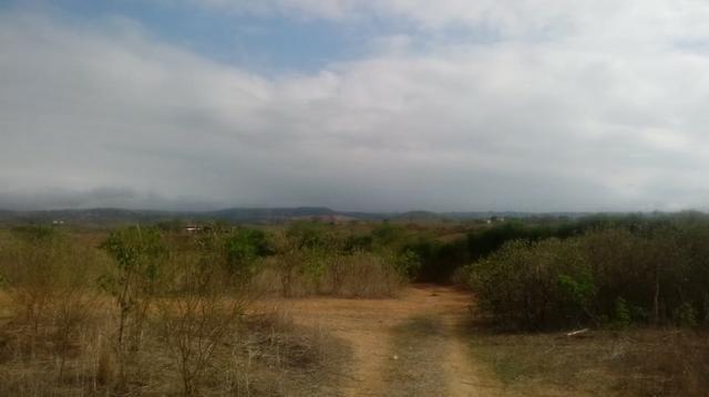 Ótima propriedade de 120 hectares, 70% plana, em Gravatá-PE. Por apenas R$ 780 mil! - Foto 2