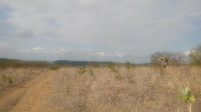 Ótima propriedade de 120 hectares, 70% plana, em Gravatá-PE. Por apenas R$ 780 mil! - Foto 4