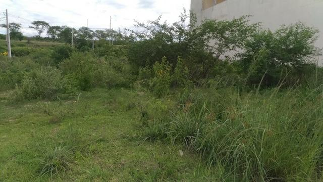 Terreno no Indianópolis à venda - Foto 2