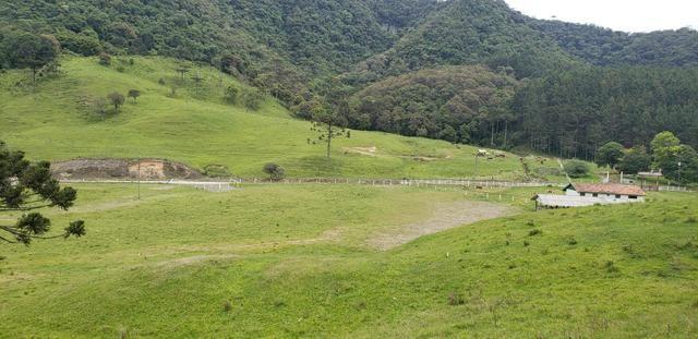 Terreno em Bom Retiro/área rural em Bom Retiro - Foto 13