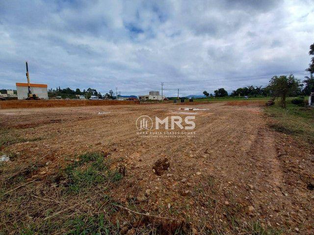Terreno à venda, 1200 m² - Centro - Canelinha/SC - Foto 3