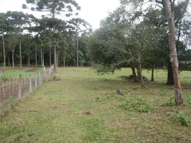 Chácara Terreno residencial à venda, Umbará, Curitiba - TE0007. - Foto 11
