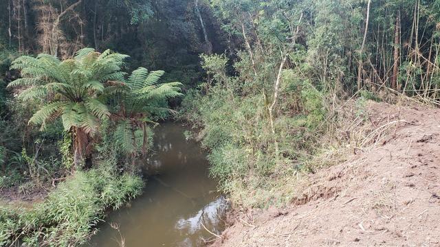 Chácara Agudos do Sul - 50 mts da Br c/ Tanque e rio - Foto 6