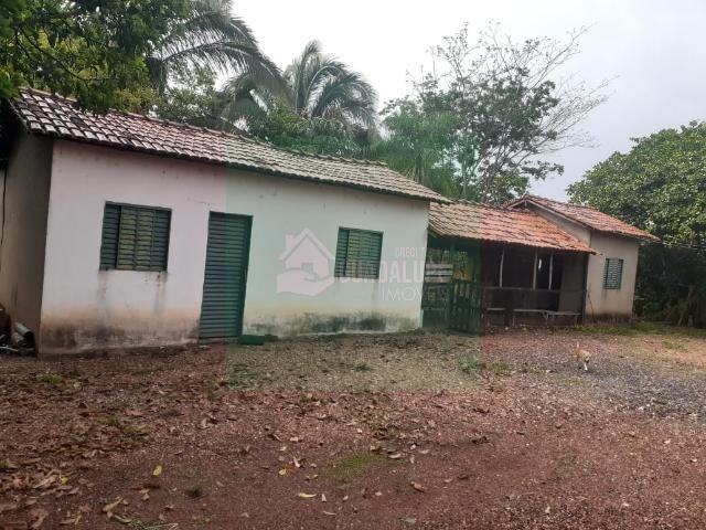Sítio- Livramento 12hec - Foto 5