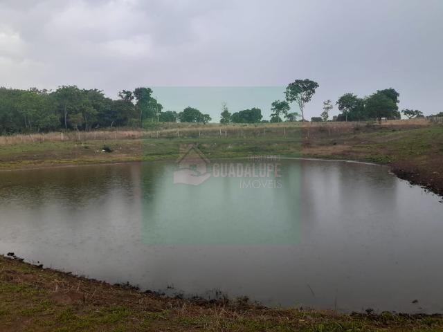 Sítio- Livramento 12hec - Foto 8