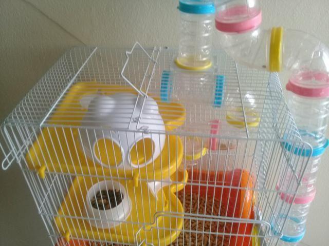 Vendo ramster e gaiola - Foto 2