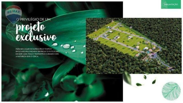 Terreno à venda em trancoso-ba - Foto 5
