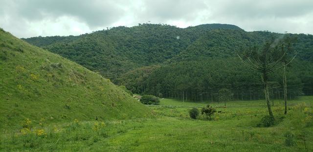 Terreno em Bom Retiro/área rural em Bom Retiro - Foto 5