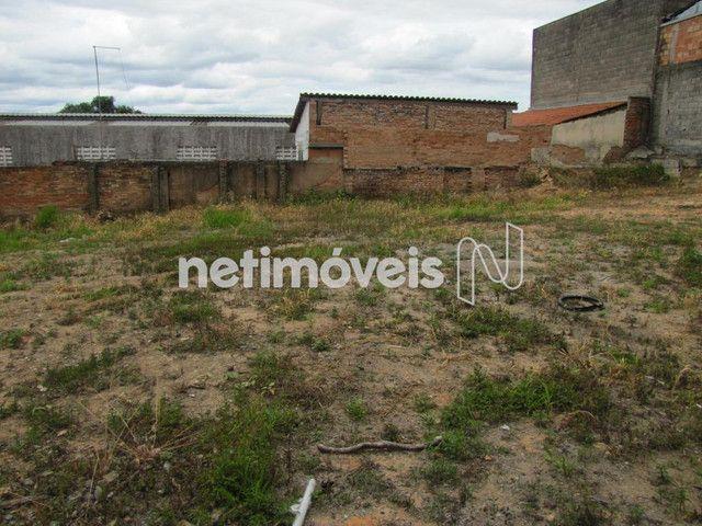 Terreno à venda em São francisco, Belo horizonte cod:717333 - Foto 6