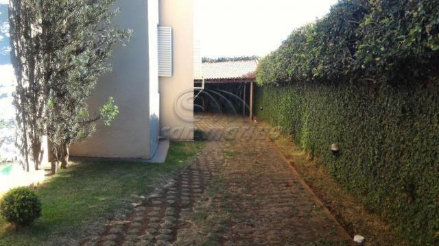 Apartamento para alugar com 3 dormitórios em Jardim santa rita, Jaboticabal cod:L4697 - Foto 16