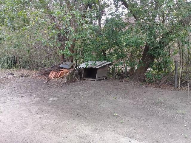 Sítio no bairro Chavão/Santo Antonio, Cabo Frio-RJ. 6.000m² - Foto 17