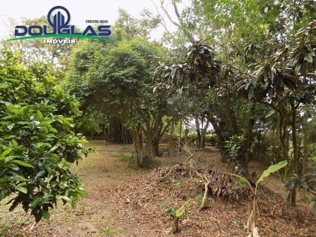 Douglas Imóveis- Tem Sítio 2500m², à Venda, Águas Claras - Foto 5