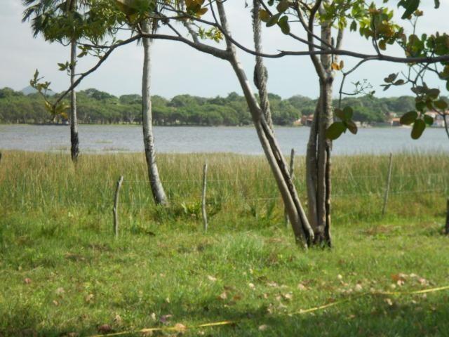 Sítio fundos para lagoa em Caucaia - Foto 12