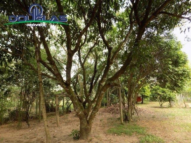 Douglas Imóveis- Tem Sítio 2500m², à Venda, Águas Claras - Foto 14