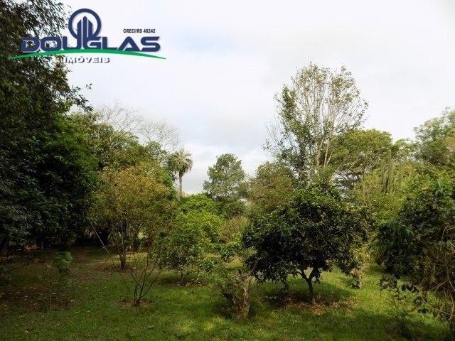 Douglas Imóveis- Tem Sítio 2500m², à Venda, Águas Claras - Foto 11