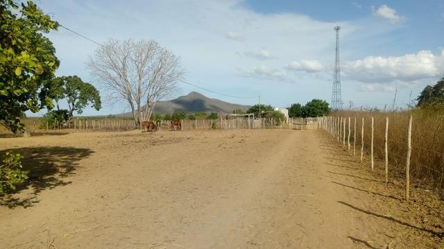 Vende-se terreno em Ocara - ce ou troco em outro terreno na região de Aquiraz - Foto 11