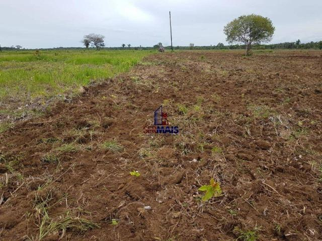 Fazenda à venda, por R$ 25.000.000 - Zona Rural - Humaita/AM - Foto 13