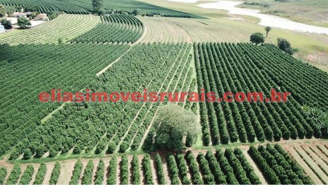 Fazenda de café - 110.000 pés - Patrocínio - MG - Foto 17