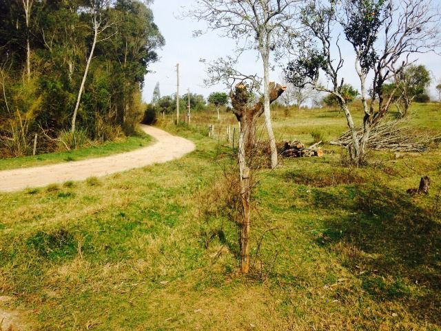 Chácara 3,17 ha -185 mil c/casa Santana do Livramento Rs