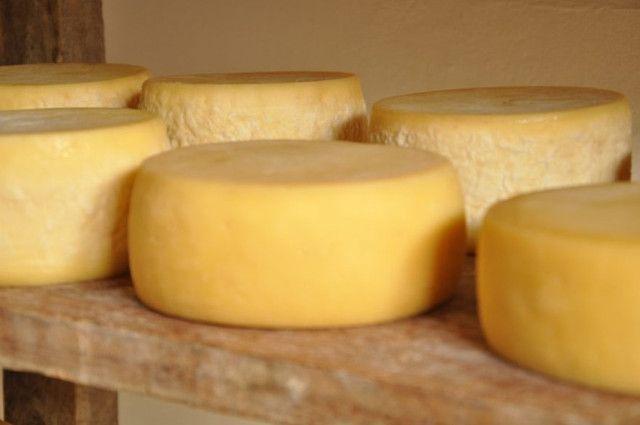 Vende-se queijo meia cura