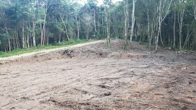 Chácara Agudos do Sul - 50 mts da Br c/ Tanque e rio - Foto 15