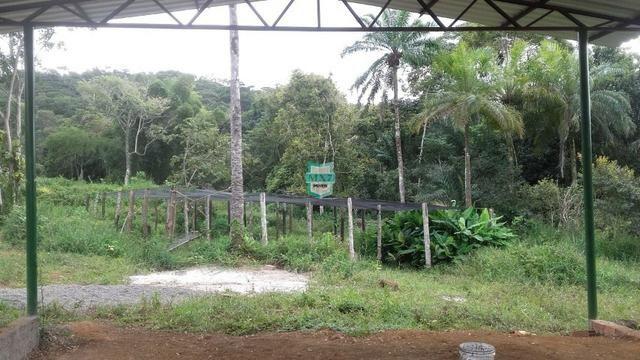 Fazenda localizada na cidade de Taperoá. - Foto 12