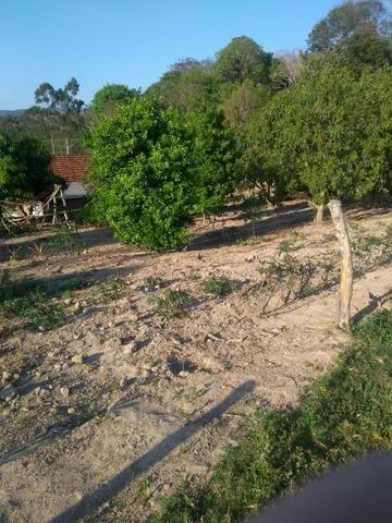 Chácara próximo de Congonhinhas faça sua proposta - Foto 13