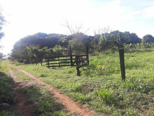Vendo ou troco chácara na estrada do quinari ramal do cacau travessa da pupunha - Foto 4