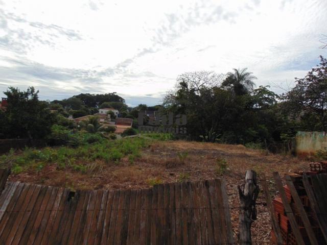Terreno à venda em Porto rico, Porto rico cod:102 - Foto 2